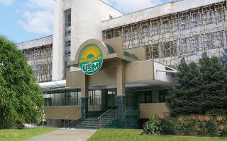 Государственный университет Молдовы