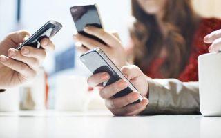Приложение на смартфоне – новый способ подготовки к ЕГЭ